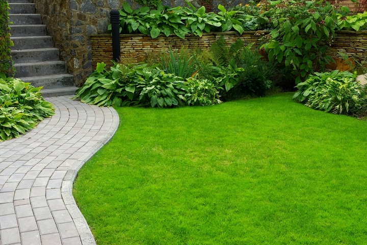 6 Ways To Keep A Lawn Green During Drought